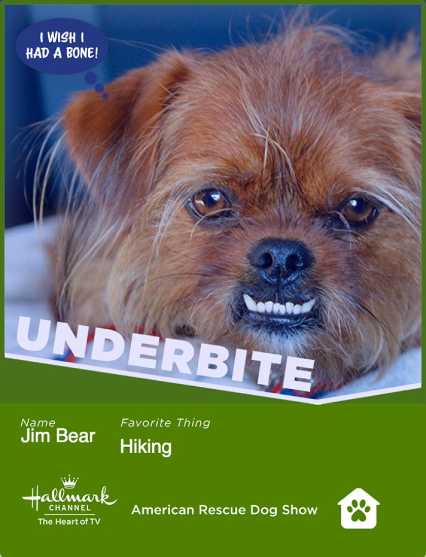 jimbear-underbite.png