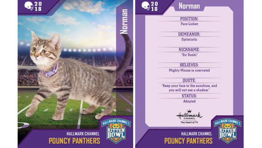 norman-pouncy-panthers-card.jpg