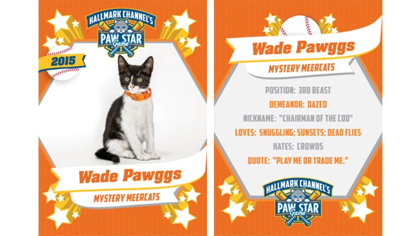 Wade Pawggs - 2015