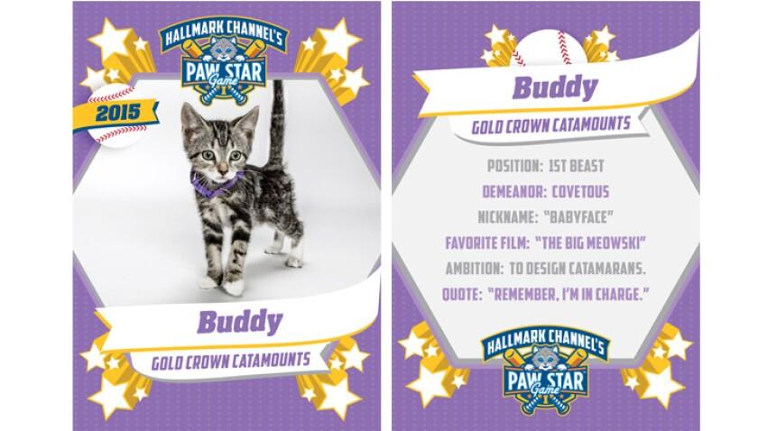 paw-star-Buddy-2015