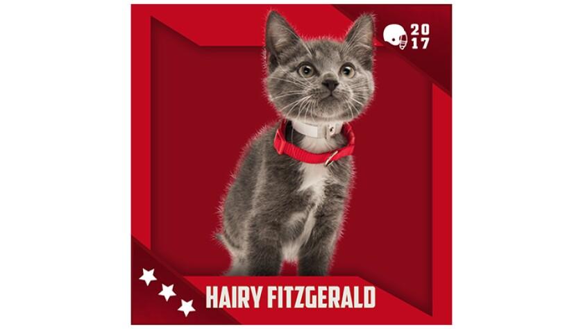 Kitten Bowl IV Emojis - Boomer's Bobcats - Hairy Fitzgerald