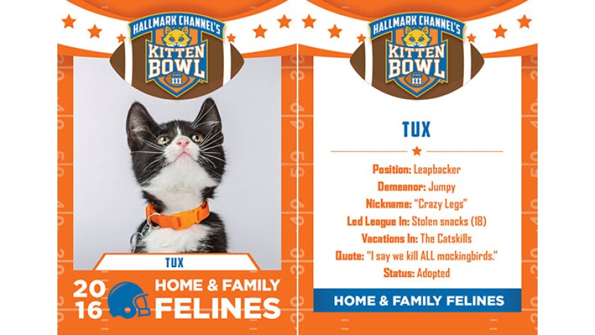 Tux-felines-KBIII.jpg