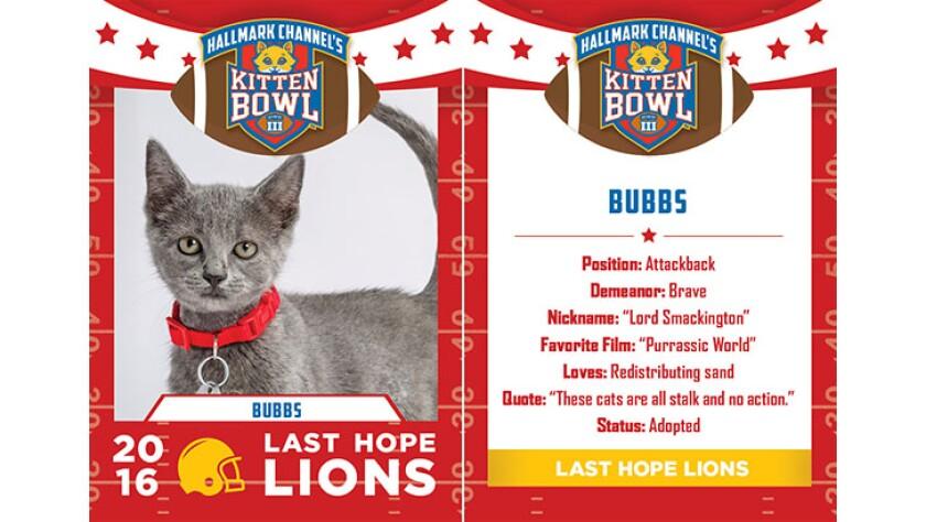 Bubbs-lions-KBIII.jpg