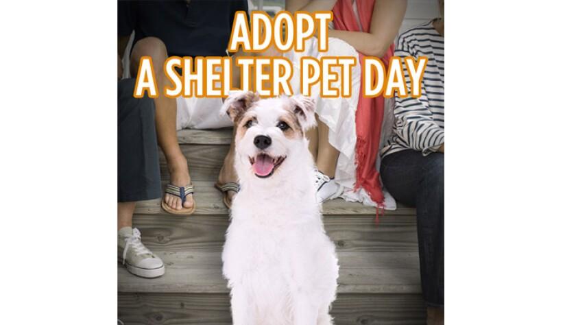 043020-adopt-shelter-pet-day.jpg