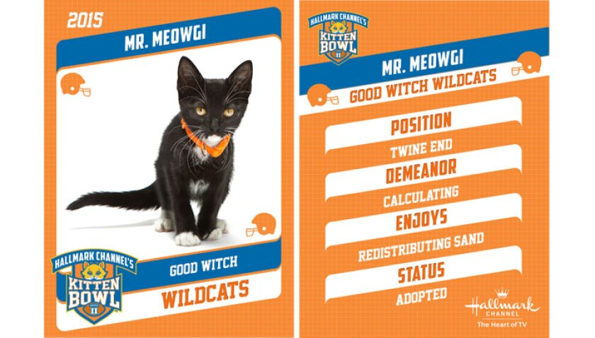 mr-meowgi-profile