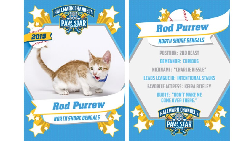 paw-star-rod-purrew-2015