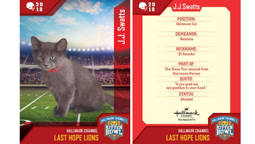 jjswatts-last-hope-lions-card.jpg