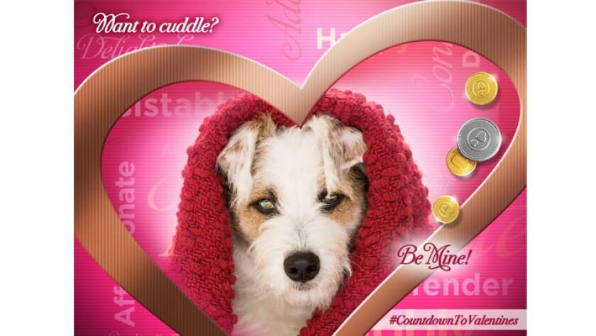 cuddle-happy-Valentine-726x410