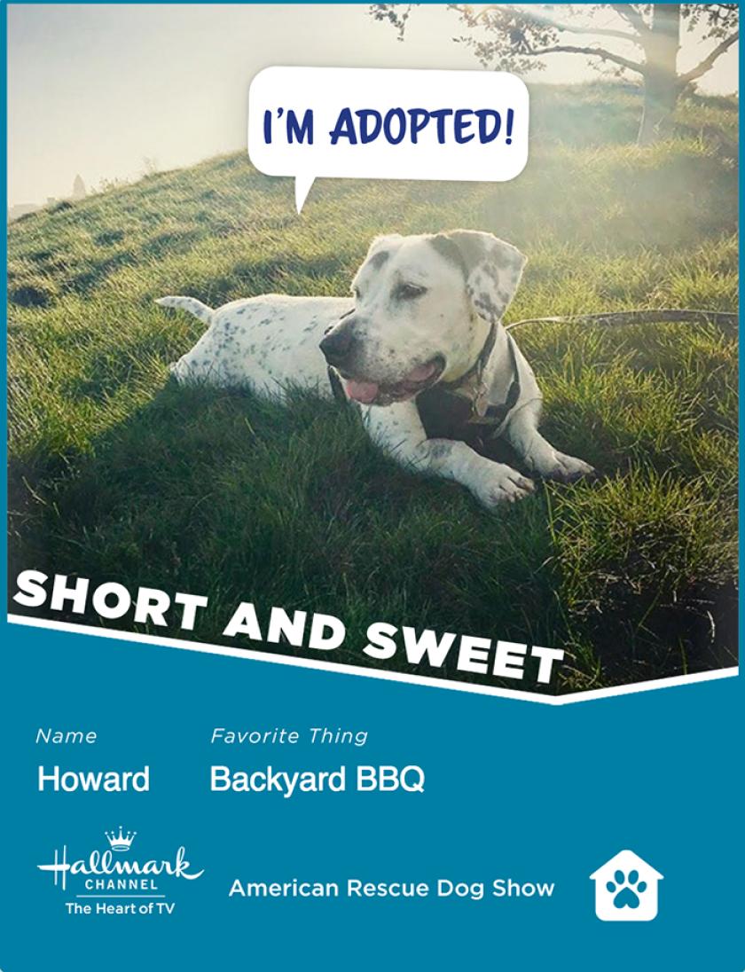 Howard-ShortSweet.png