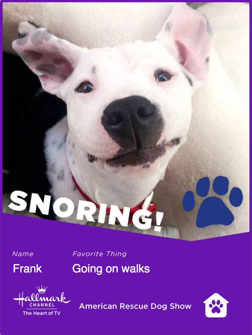 Frank-snoring.png
