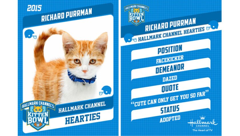 richard-purrman-profile
