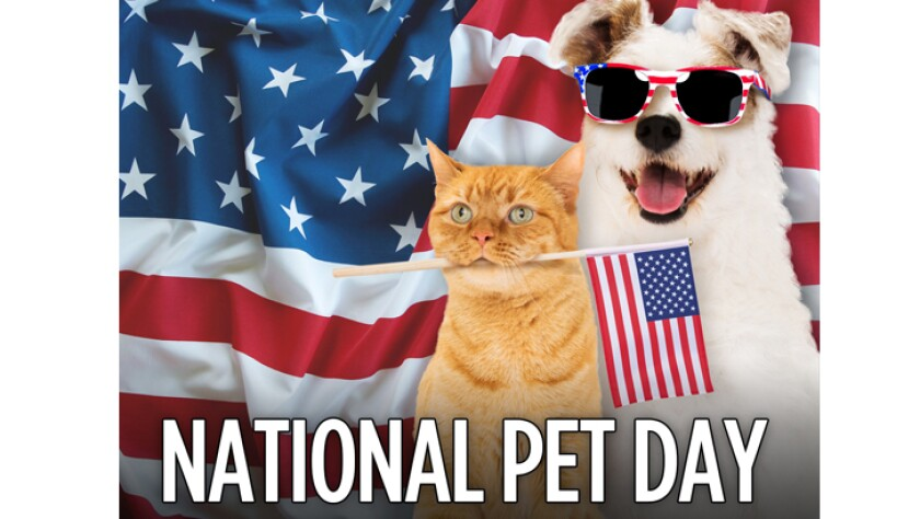 041116-national-pet-day.jpg