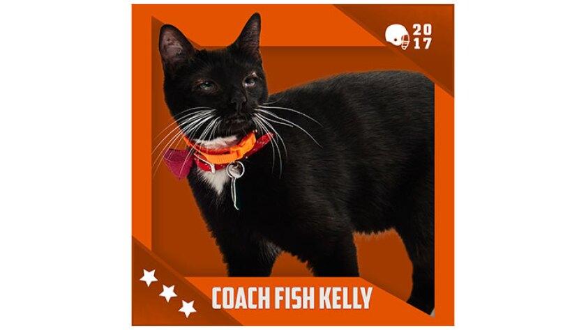 Kitten Bowl IV Emojis - Home & Family Felines - Coach Fish Kelly