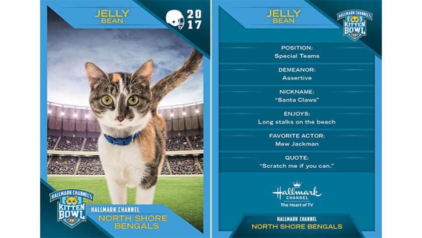 P2-Jelly-Bean-KBIV4_TrdingCrds_.jpg