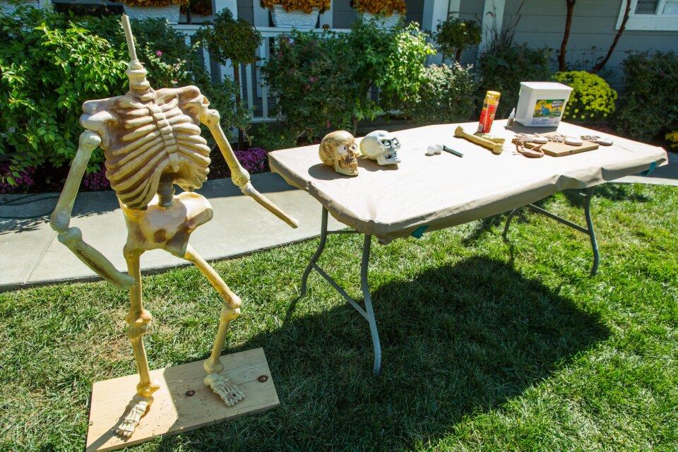 hf5019-product-skeleton.jpg