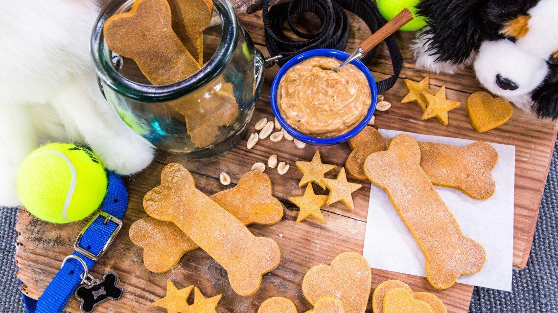 David Mazouz's Sweet Treats for your Dog