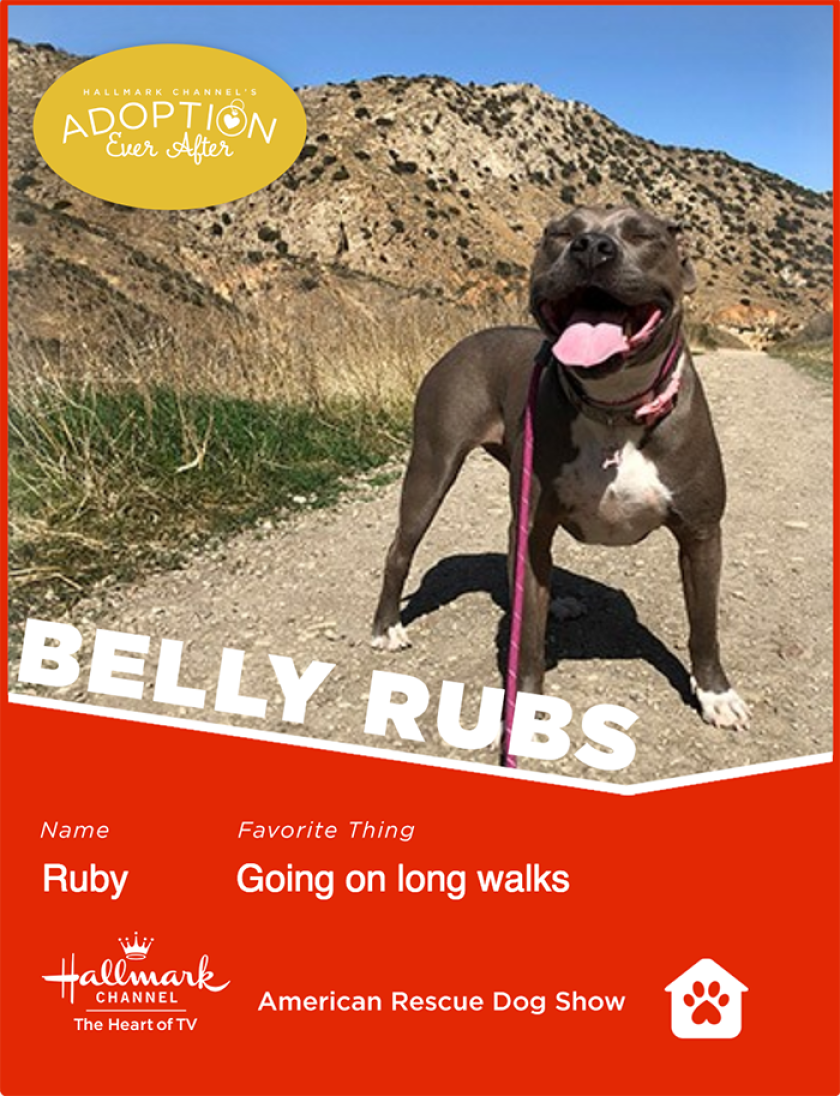 Ruby-bellyrubs.png