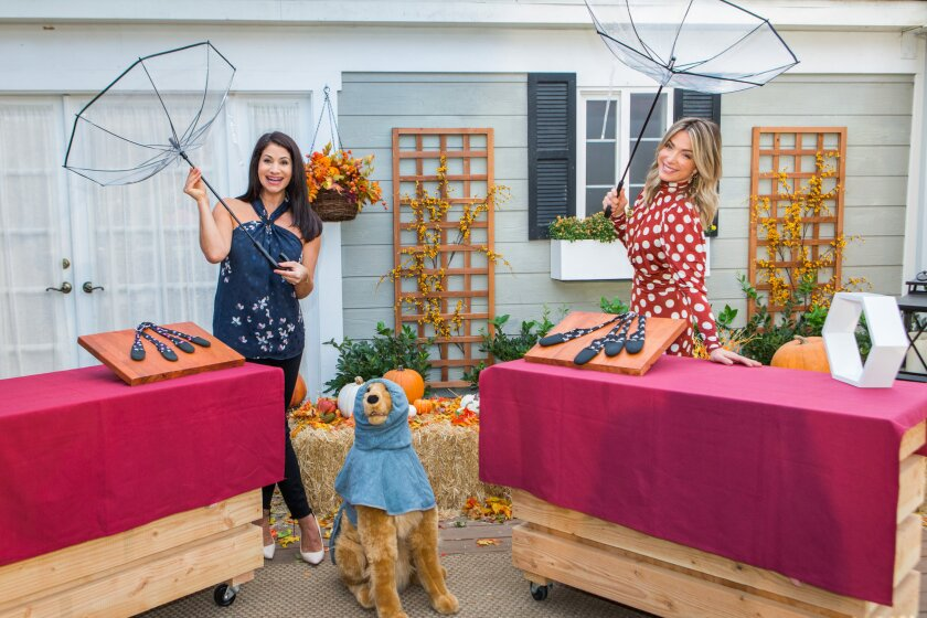 Home and Family 9027 Final Photo Assets