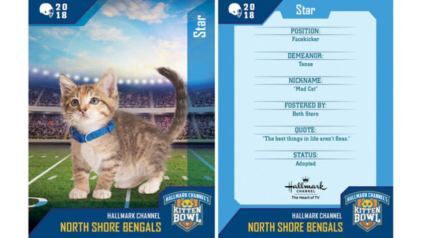 star-north-shore-bengals-card.jpg