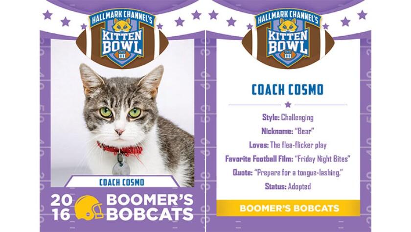 CoachCosmo-bobcats-KBIII.jpg