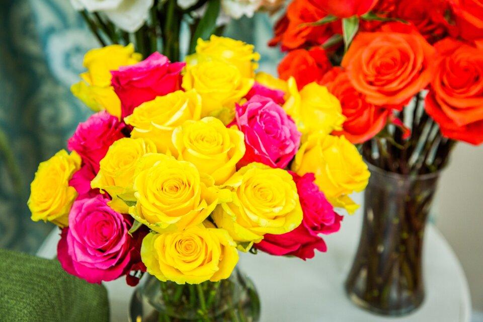 hf4099-product-roses.jpg