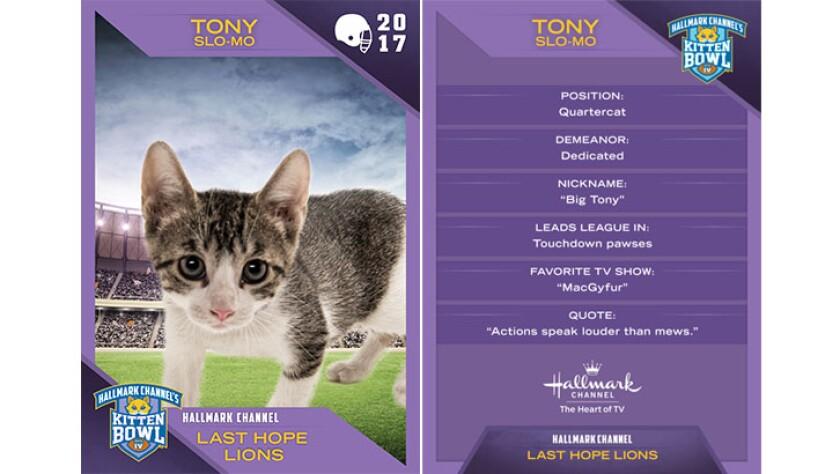 P1-Tony-Slow-Mo-KBIV4_TrdingCrds_.jpg