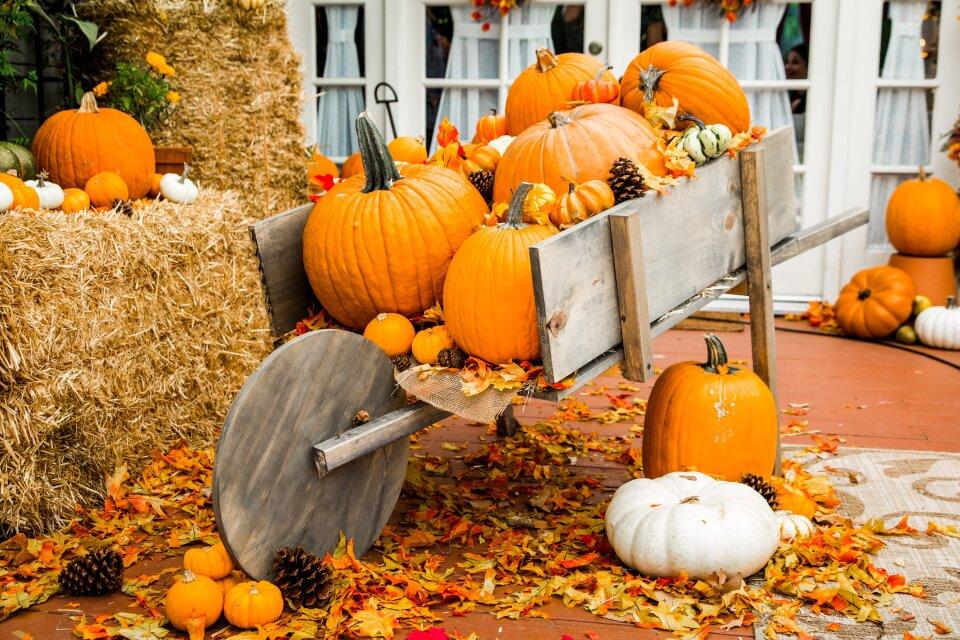 DIY Pumpkin Wagon