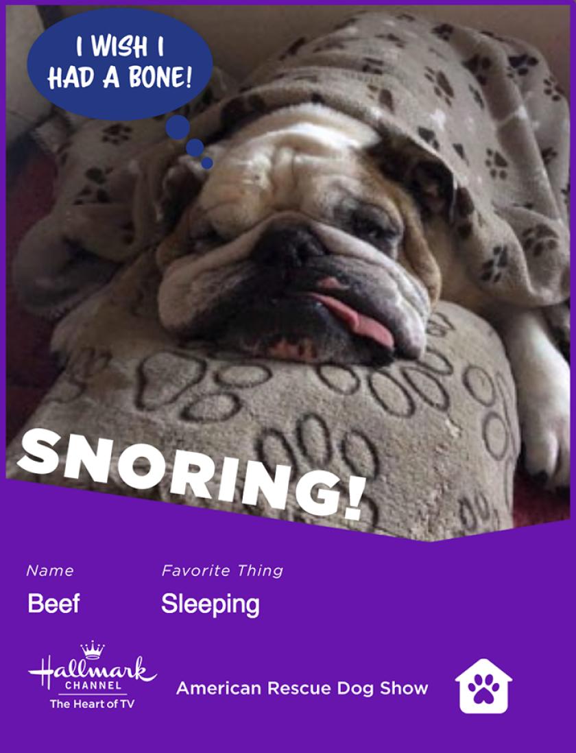 Beef-snoring.png