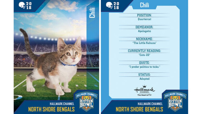 chili-north-shore-bengals-card.jpg