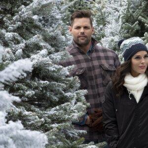 Erin Cahill as Megan on Last Vermont Christmas