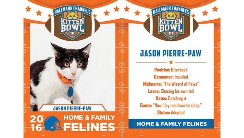 JasonPierrePaw-felines-KBIII.jpg