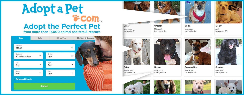 DIGI18_ARDS_Adopt-A-Pet_1440x560.jpg