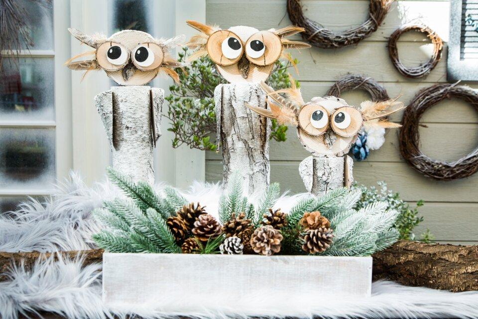 hf6096-product-owls.jpg