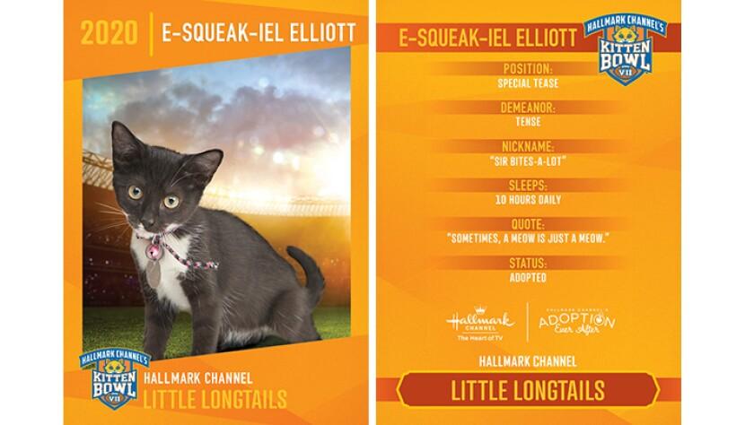 LL-E-Squeak-iel-Elliott.jpg