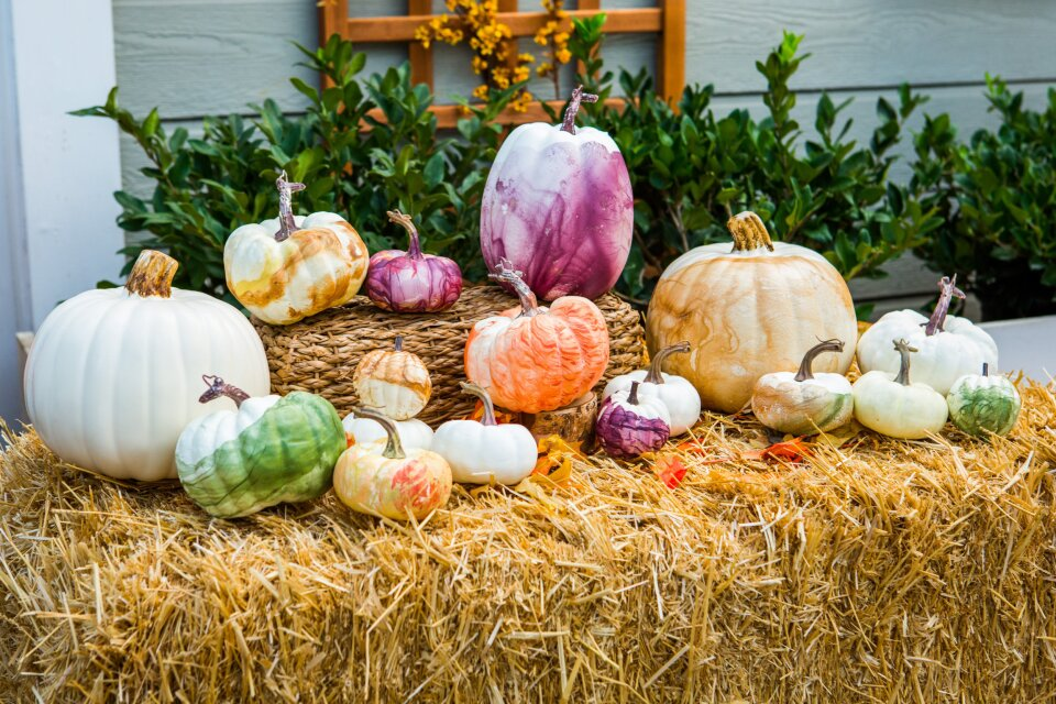 DIY Glam Pumpkins