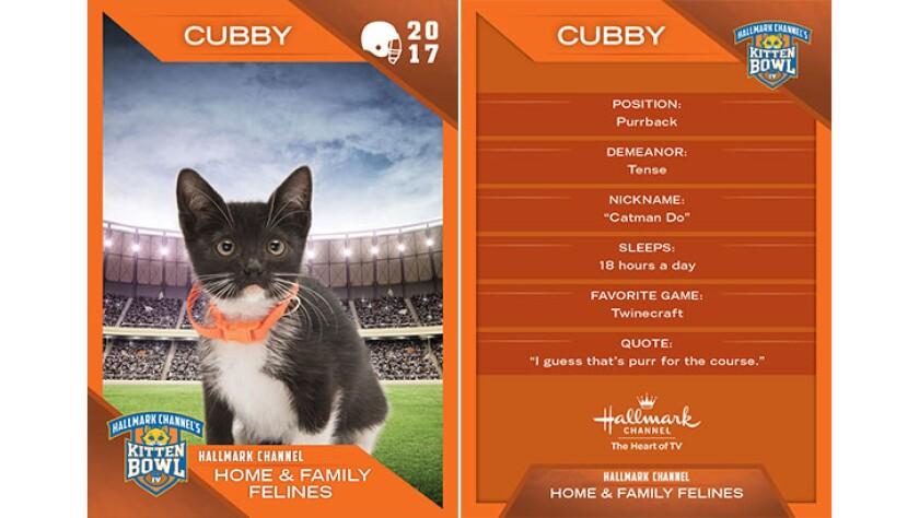 P3-Cubby-KBIV4_TrdingCrds_.jpg