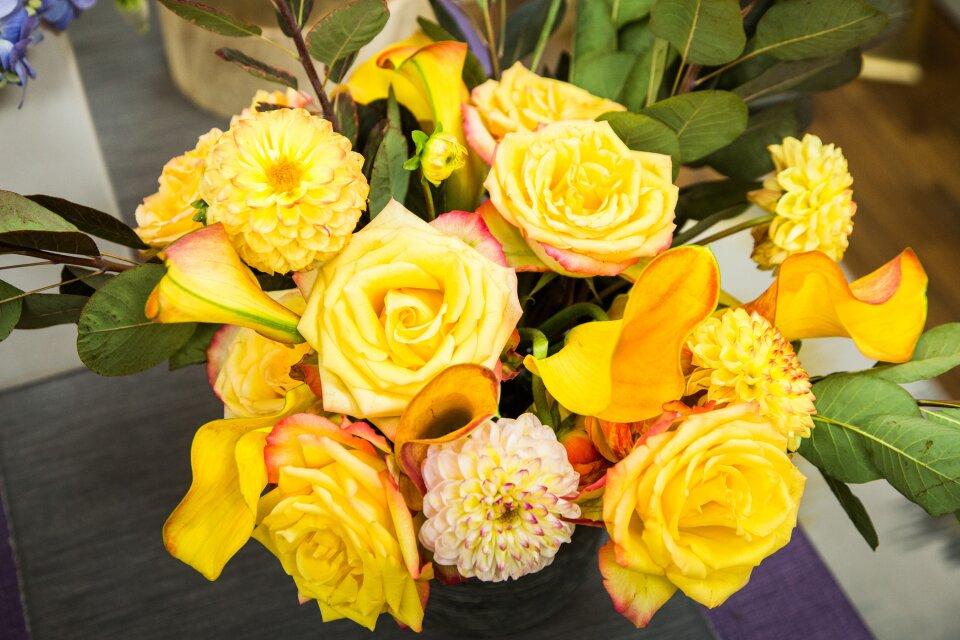 hf5253-product-flowers.jpg