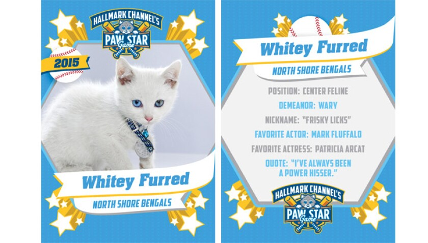 paw-star-whitey-furred-2015