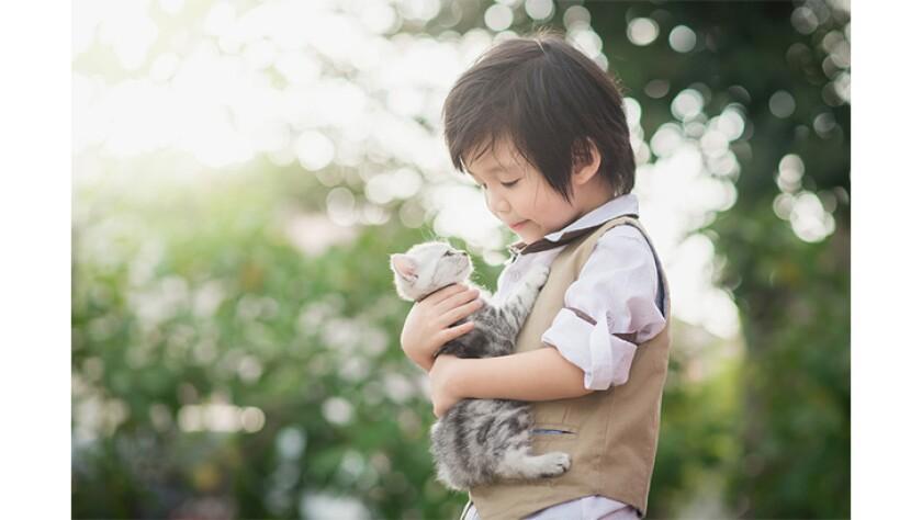 Bringing Kitty Home - 13