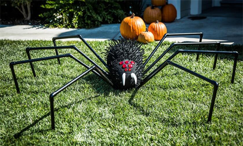 hf-ep2016-segment-spider.jpg