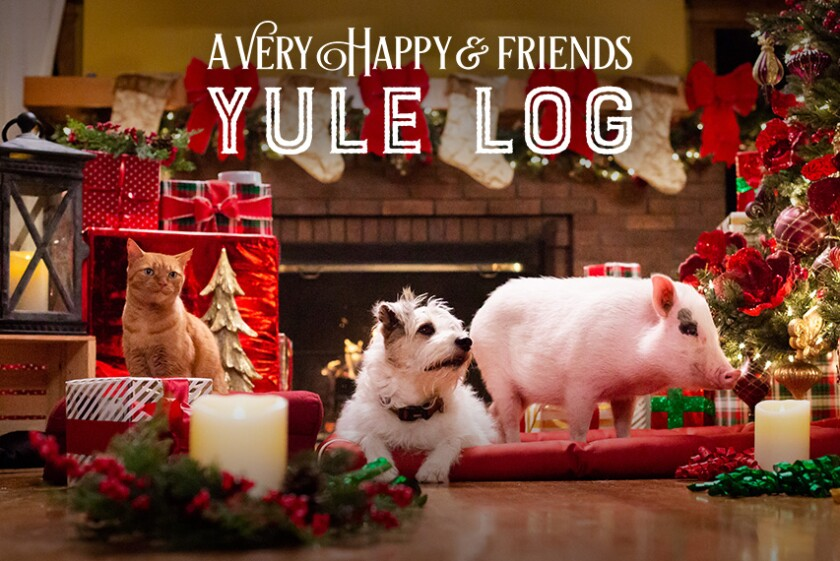 Photos from A Very Happy & Friends Yule Log 2018 - 5
