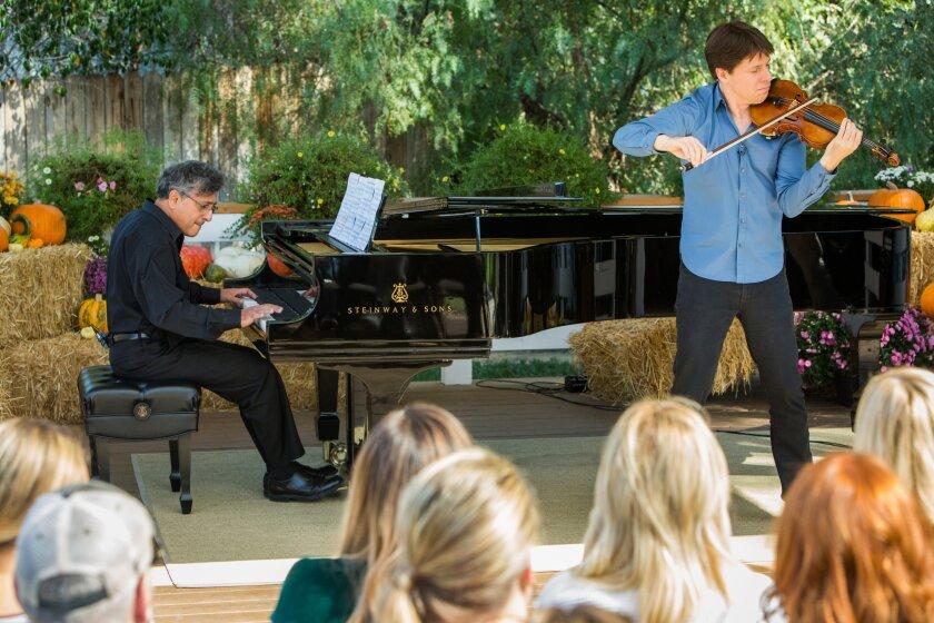 hf5023-recap-violin.jpg