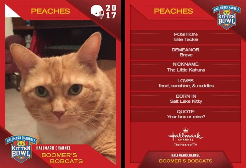 BB-Peaches.jpg