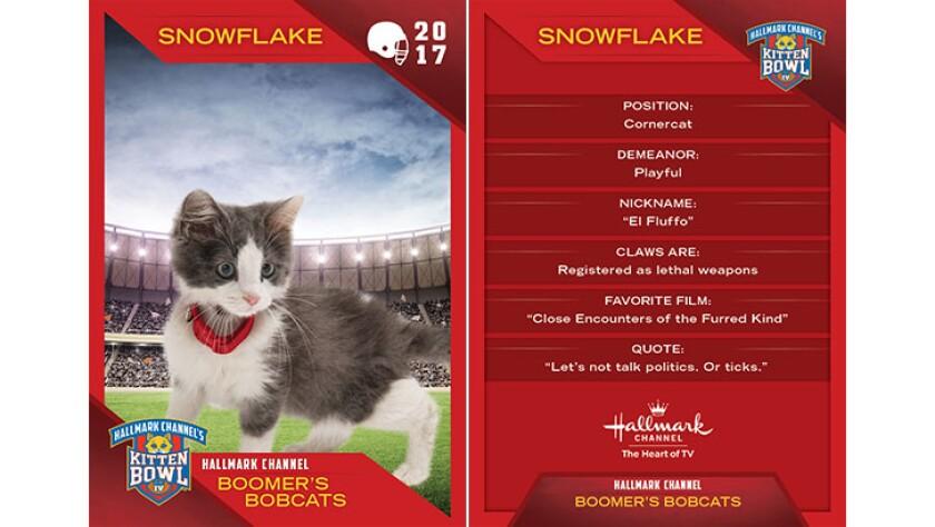 P4-Snowflake-KBIV4_TrdingCrds_.jpg