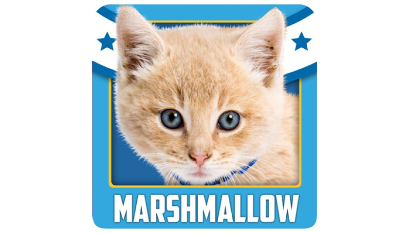 Emojis-KBIII-Bengals-Marshmallow.jpg