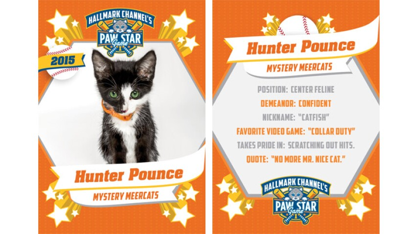 paw-star-hunter-pounce-2015