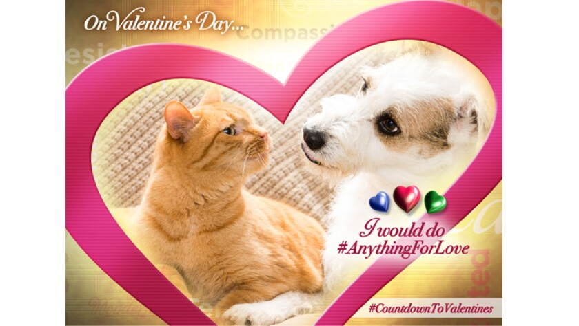 anything-for-love-happy-Valentine-726x410.jpg
