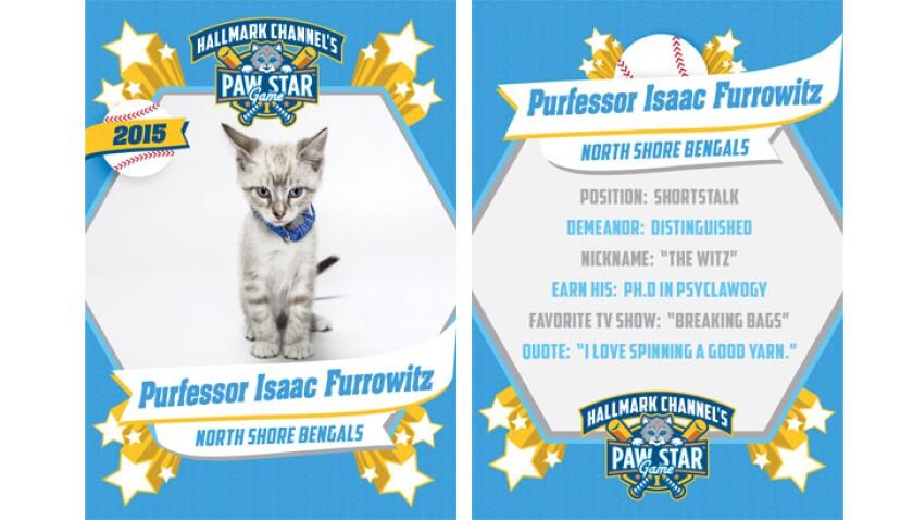 paw-star-purfessor-isaac-furrowitz-2015