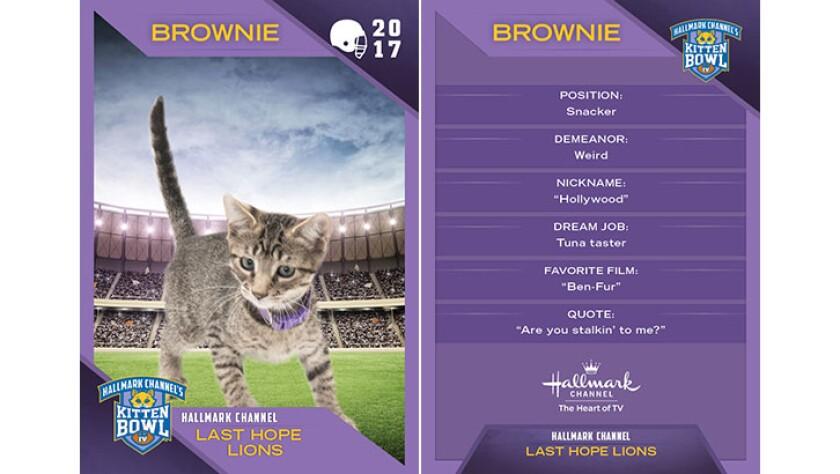 P1-Brownie-KBIV4_TrdingCrds_.jpg