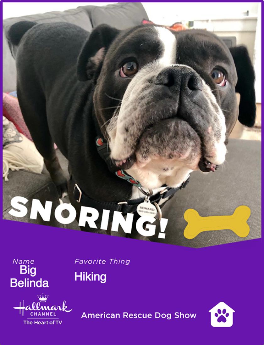 BigBelinda-snoring.png